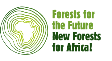 New Forests for Africa